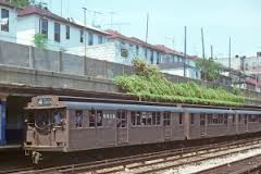 Type-D Triplex BMT Train