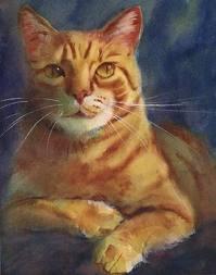 Olaf, the Viking Cat