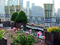 St. George rooftop gardens