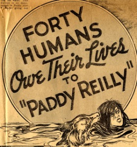 Paddy Reilly saved animals and people