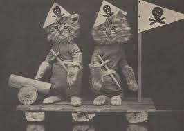 Pirate Cats of Chelsea Piers