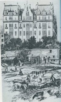 The Dakota, 1889