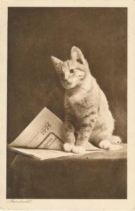 Cat1926