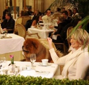Martha Stuart and her dog, Ghenghis Khan, at afternoon tea at the Plaza.