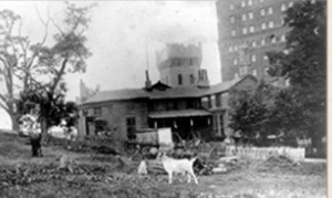 Schermerhorn Farm, 1800s