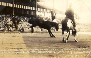 Tex Austin Rodeo, Yankee Stadium