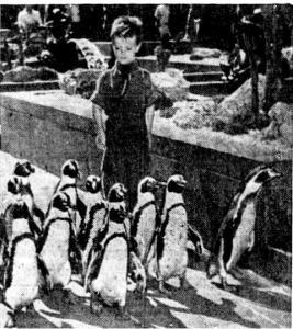 Michael J. O'Donnell and penguins at Rockefeller Center