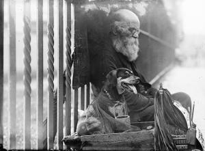 """Beggar's dog – Hoboken,"" ca. 1910-1915"