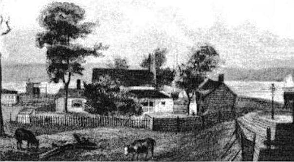 Rapelje Farm