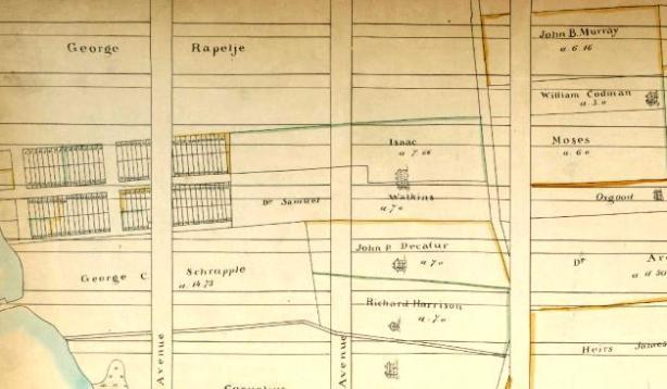 Blue Book Map of Farms, Weylandt Patent